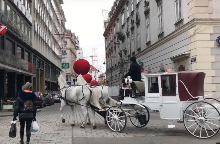 Ode to Vienna