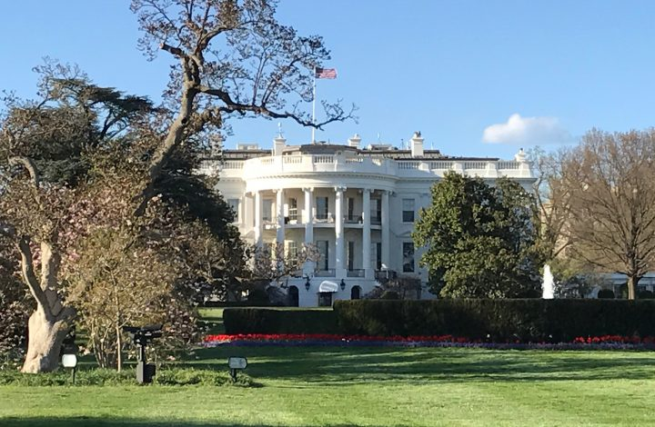 Meditating for Peace in Virginia & Washington D.C.