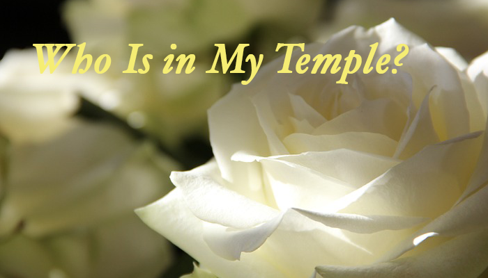 Who Is in My Temple?