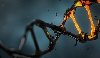 New Study: Alcohol damages DNA & increases Cancer risk