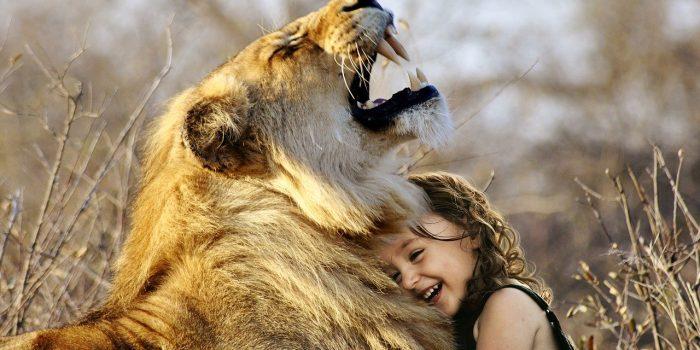 Taigan Lion Park- Where lions hug Tourists.